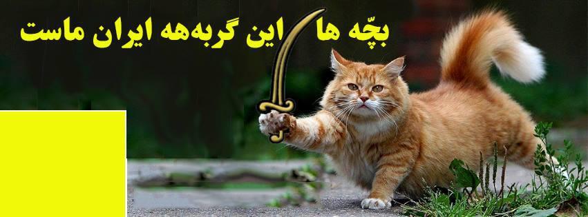 بچه ها این بابک زنجانیه!